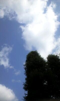 リーマンショック1年、神奈川歯科大学52億円運用損失−朝日新聞